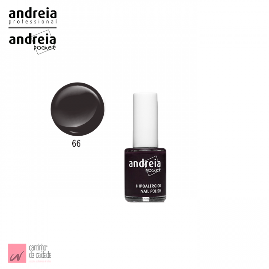 Verniz Pocket  Andreia 66 10.5 ml